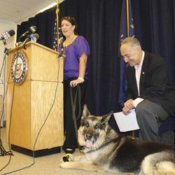 """In this photo provided by Senator Charles Schumer's Office, Schumer, right, joins Marine Corps veteran Corporal Megan Leavey and """"Sgt. Rex,"""" a military working dog that she partnered with to locate improvised explosive devices during her tour in Iraq, during at a news conference in New York, Sunday, April 15, 2012. Schumer held a homecoming celebration at his office Sunday for Sgt. Rex, a German shepherd wounded in Iraq, and the dog's handler, former Cpl. Megan Leavey, who was injured in the same incident in 2006. Leavey had been trying to adopt Rex for five years but was stymied by bureaucracy until Schumer intervened. The New York senator is pushing a bill that would speed up the adoptions."""