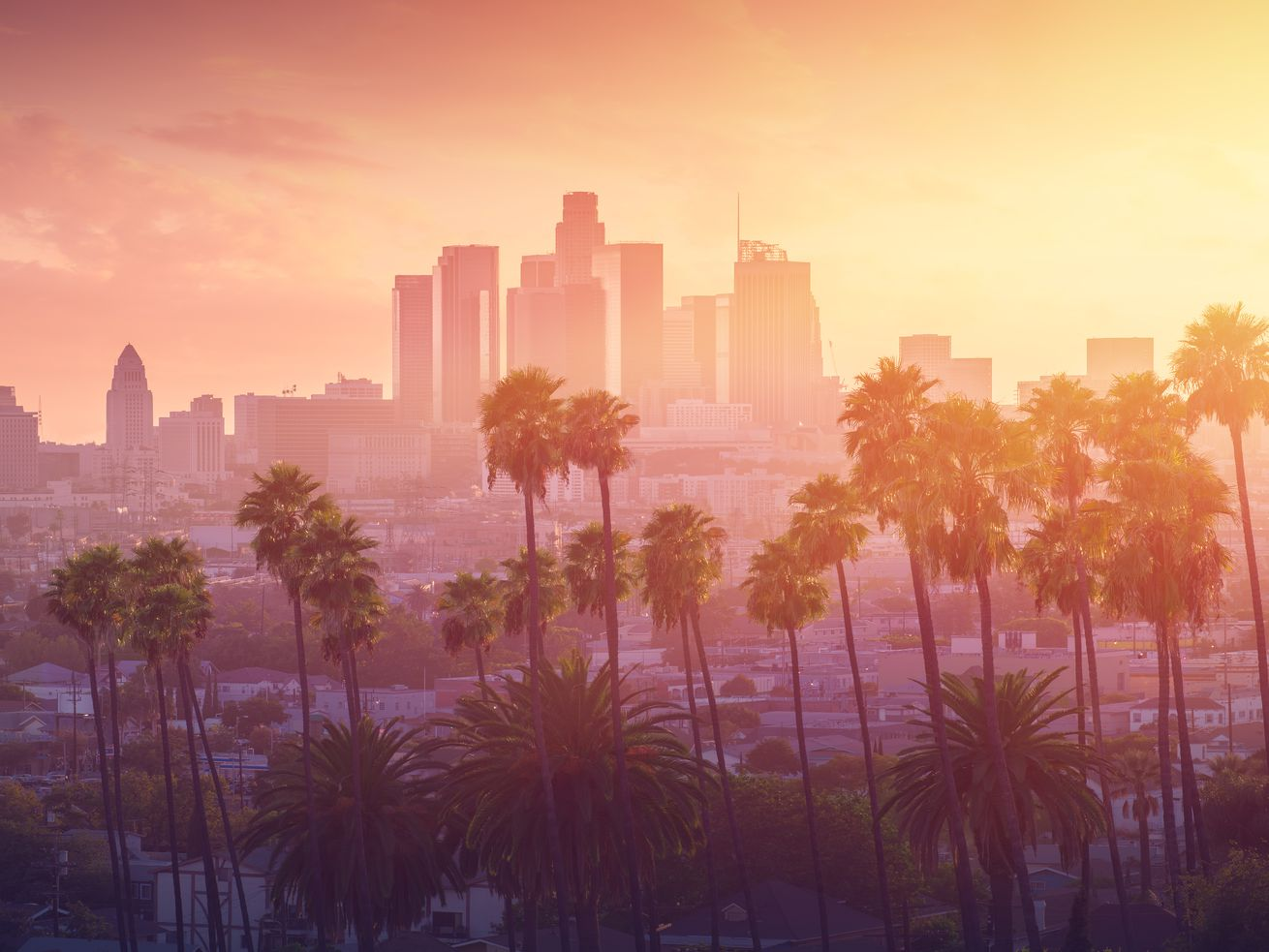 A distant view of the Los Angeles skyline, fronted by a row of palm trees. Sunset casts a gradient of yellow, pink, and purple over the scene.