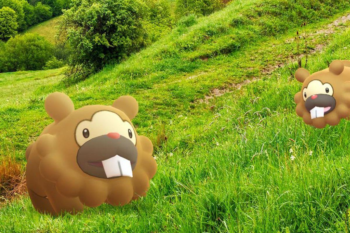 Bidoof walks on grass in artwork from Pokémon Go