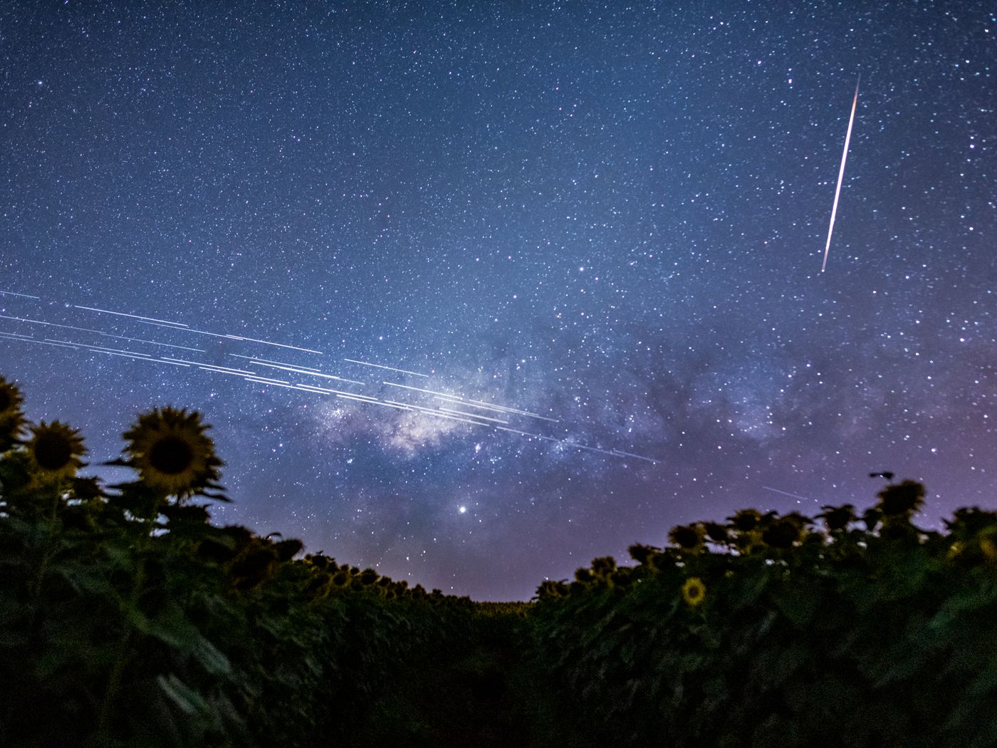 Elon Musk's Starlink satellites are interfering with astronomy. It's just  the beginning. - Vox