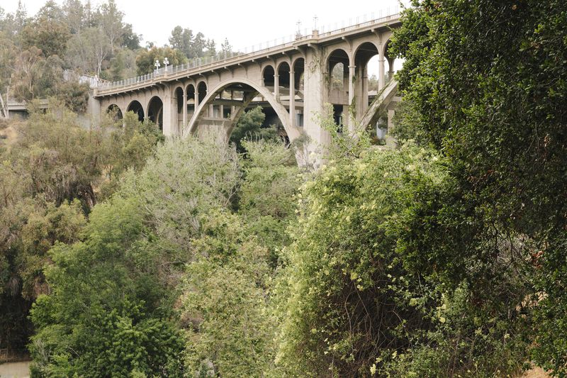 In the foreground are trees. In the background is a large elevated bridge with train tracks.