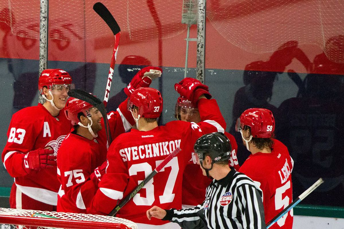 The Red Wings Celebrate Tomas Nosek's 1st Period Goal Against The Columbus Blue Jackets In The 2015 Prospect Tournament Championship Game.