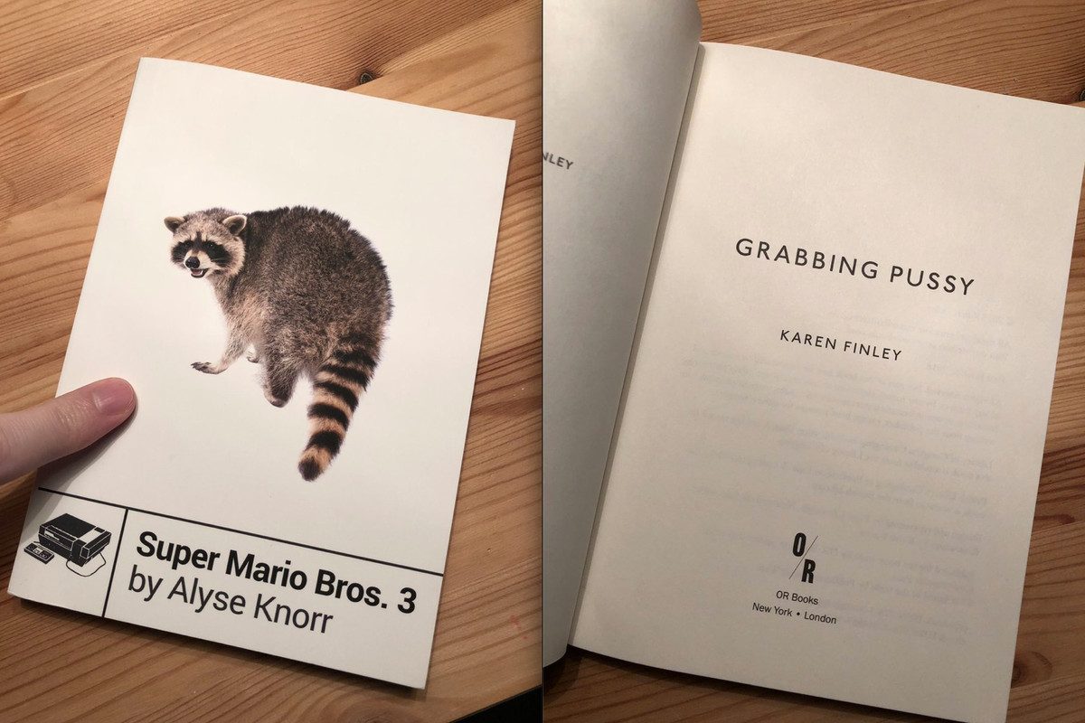 Misprint Gives Super Mario Bros 3 Fans A Poetry Book Called
