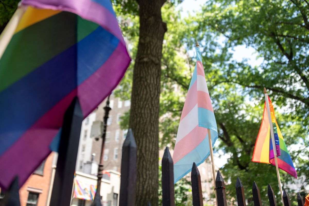 A blue, pink, and white trans pride flag hangs between two rainbow flags from a wrought-iron fence on a treelined street in New York City.