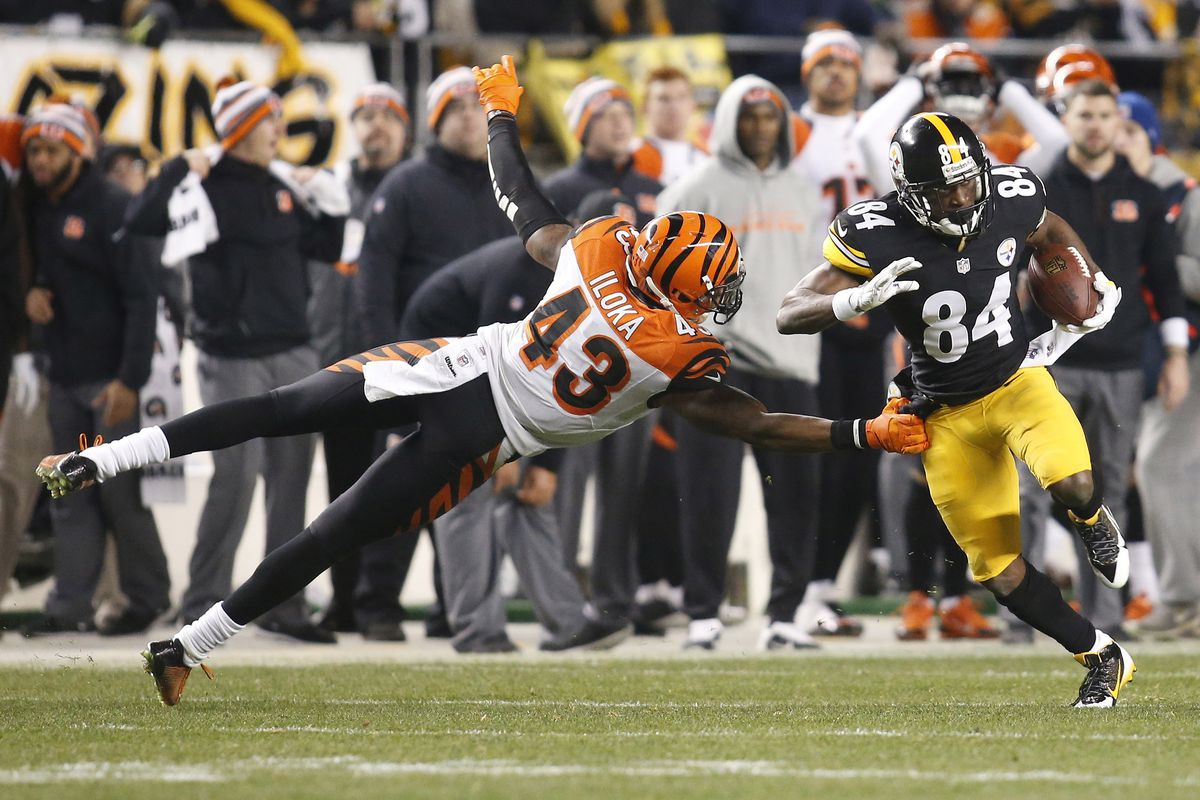 The Bengals could not stop the Steelers from winning the AFC North.