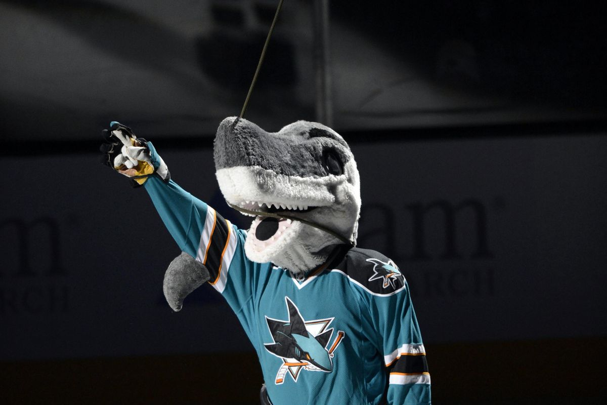Sharkie is excited for his new look. Photo Credit