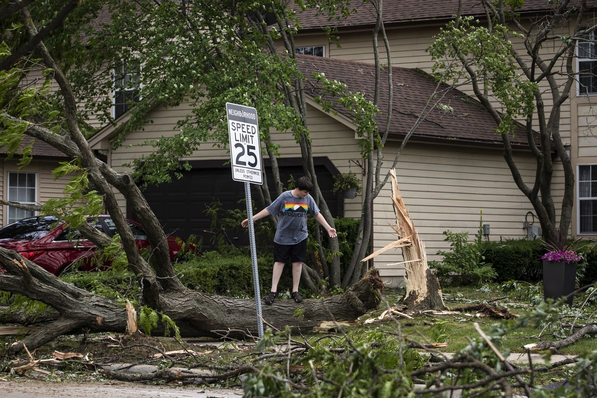 A child plays on a fallen tree on 77th Street near Ranchview Drive in Naperville after a tornado ripped through the western suburbs overnight, Monday afternoon,