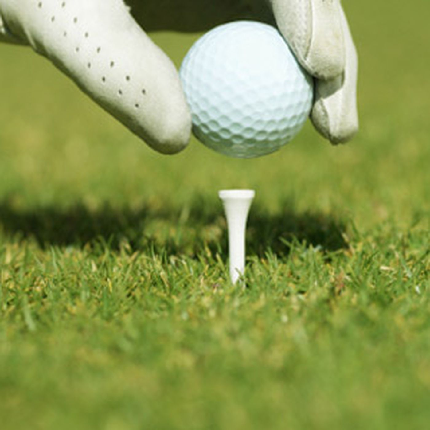 10 Uses for Golf Tees - This Old House