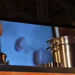 Duh, Andrew Zimmern has a photo of squirrel testicles in his phone