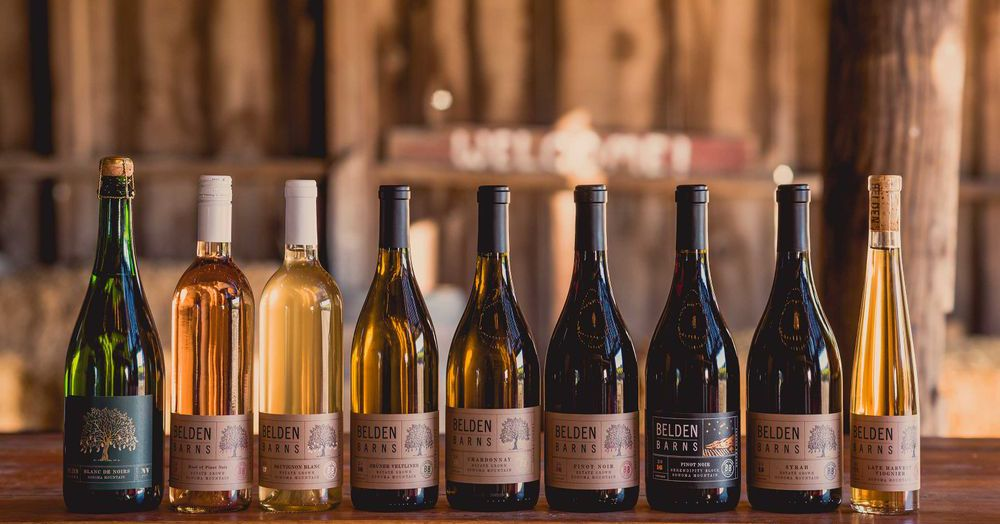 Virtual Wine Tasting from the Couch, and More Weekend Entertainment