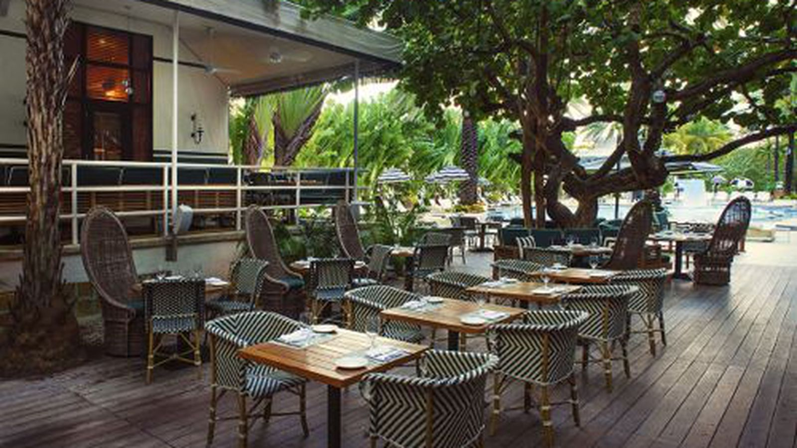 Best dating places in miami