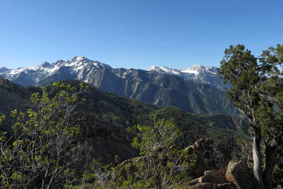 This view, looking south, shows some of the prominent peaks of the Cottonwood canyons: Dromedary, Sullivan and the Broads Fork Twin Peaks at left; Lone Peak at the right.