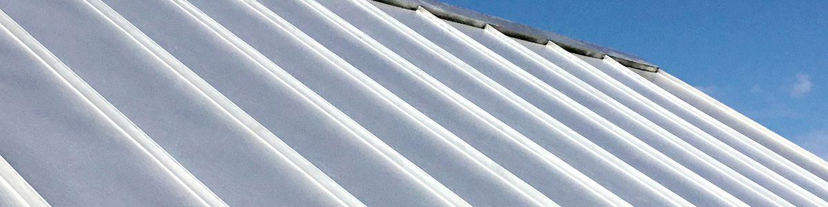terne metal roof, July/Aug 2020