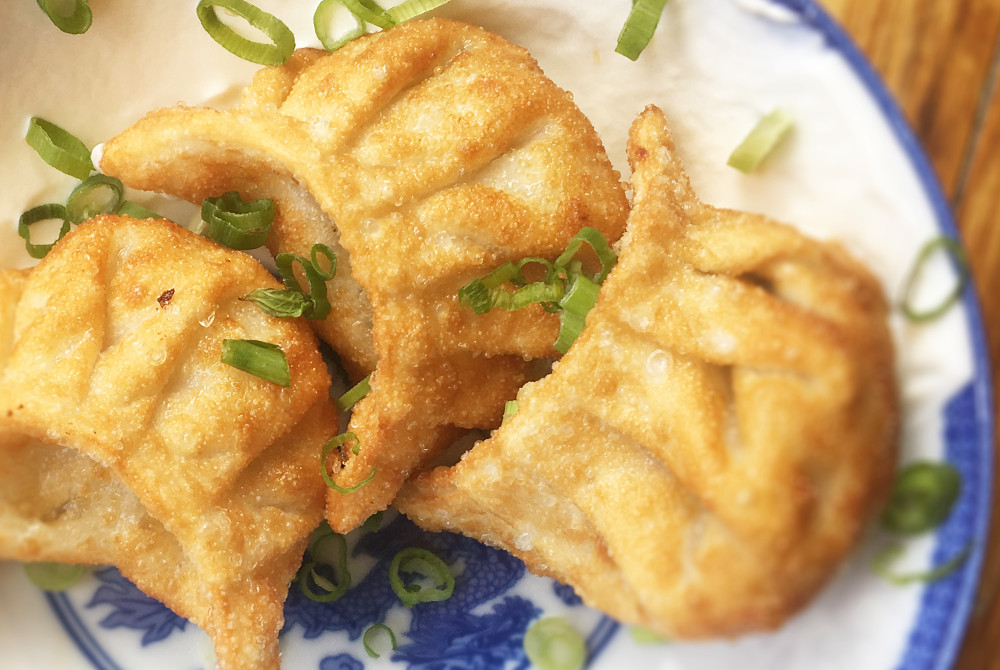 Three plump fried dumplings sit on a white plate with a blue floral pattern, garnished with chopped scallions