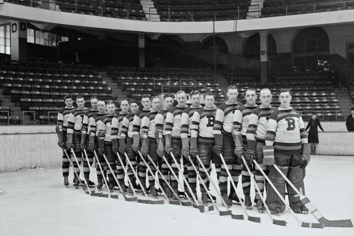 Boston Bruins Hockey Team Portrait
