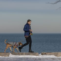 A woman walks her dogs along atop rocks placed near the lakefront, near Diversey Harbor, Tuesday, Feb. 23, 2021. The Chicago Parks District reopened the Lakefront Trail Tuesday.