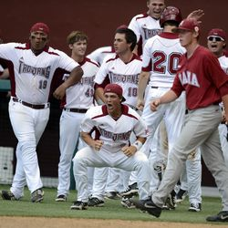 Troy Trojans bench reacts after the score was tied in the bottom of the ninth inning during the Tallahassee regional of the 2013 NCAA baseball tournament.