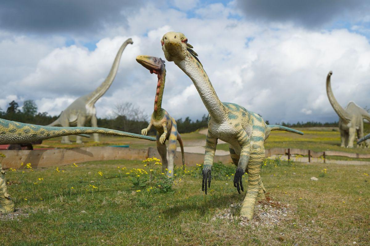 Germendorf Animal, Leisure and Prehistoric Park