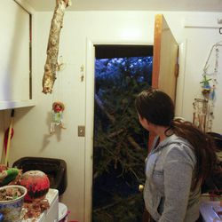 Bri Saley shows damage from a fallen pine tree to her laundry room in her home in Sugar House Thursday, Dec. 1, 2011, after high winds blew two large trees onto her home.
