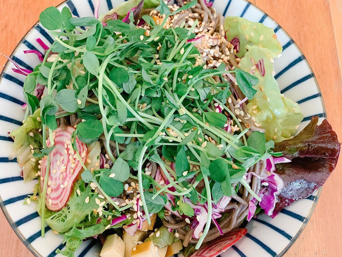 A decorative bowl containing soba noodles topped with sprouts, radishes, tofu, and other vegetables