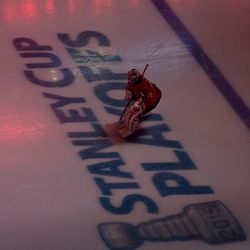 Holtby Skates Over Markings
