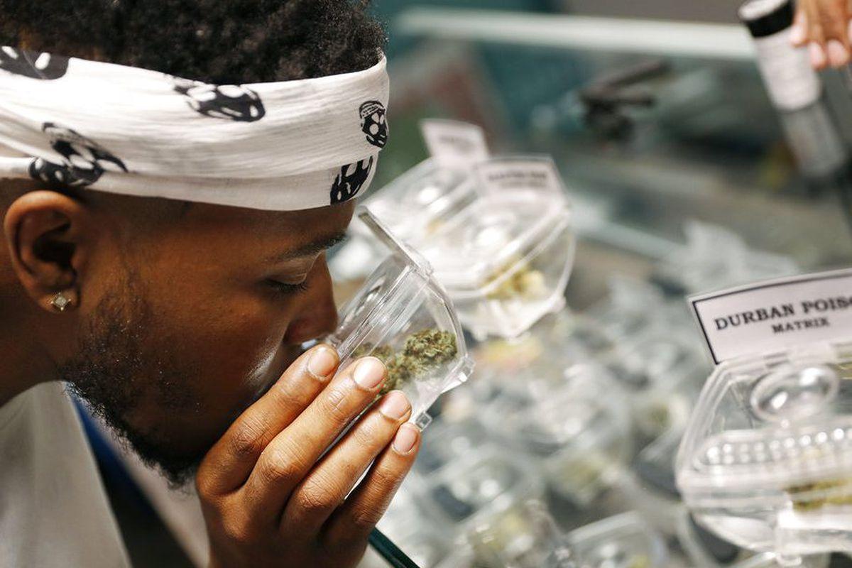 A shopper smells a glass bowl of marijuana at a dispensary.