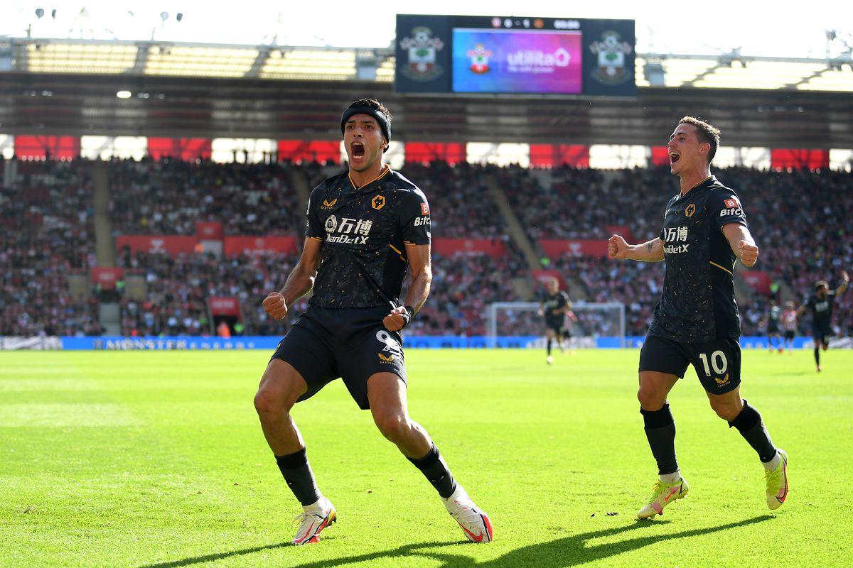 Southampton v Wolverhampton Wanderers - Premier League, Saints, Wolves, Raul Jiminez