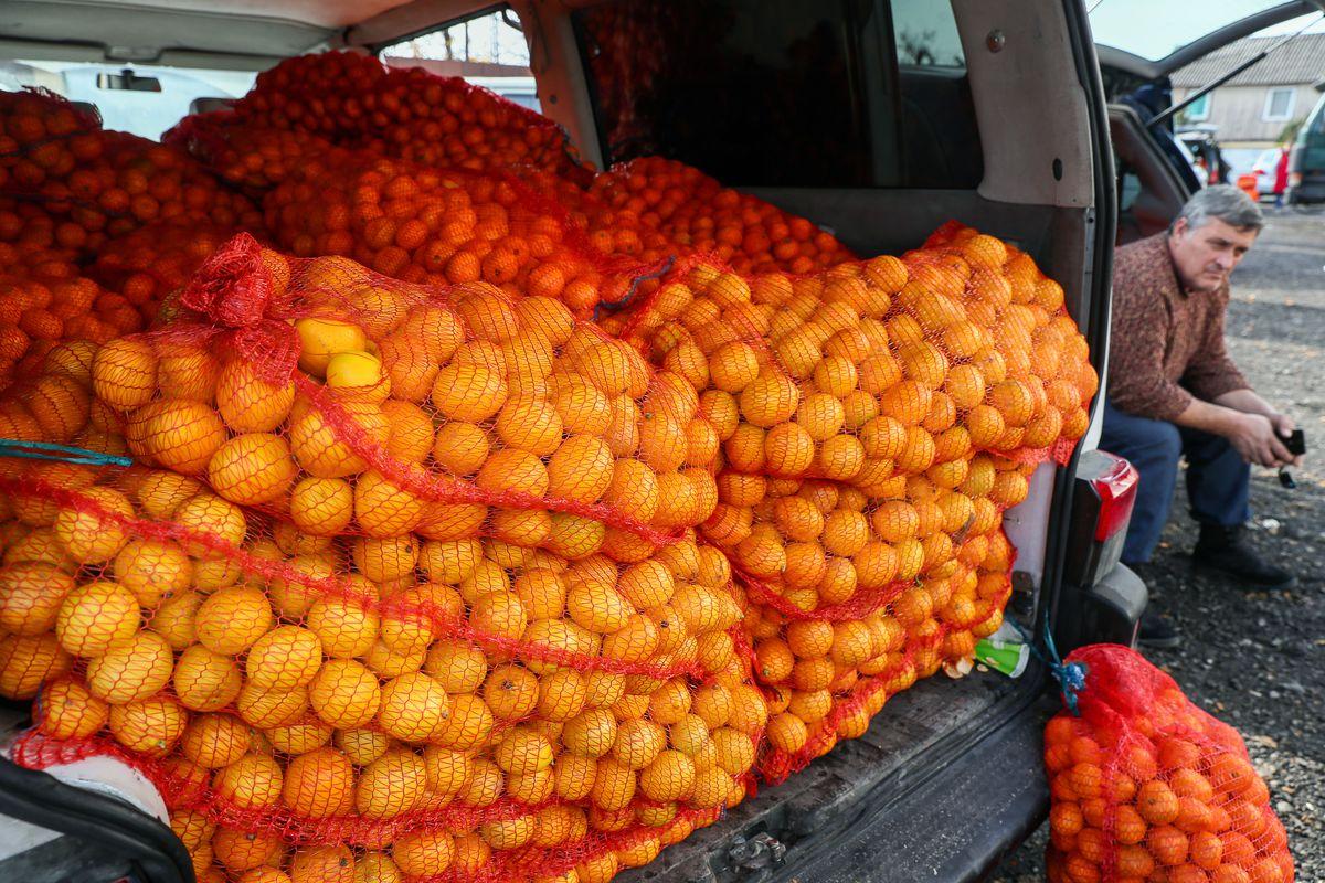 Selling tangerines on Russia-Abkhazia border