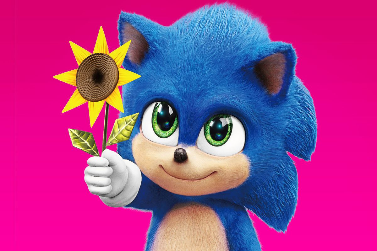 Baby Sonic holds up a yellow flower