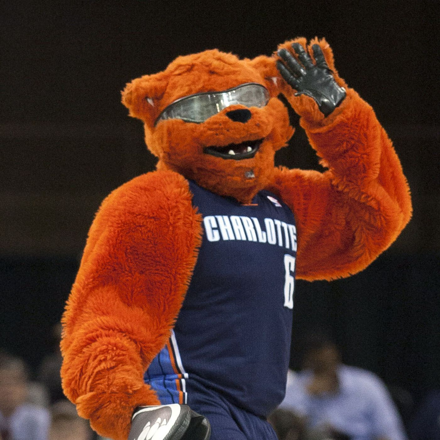 Bobcats Original Branding Botched By Bob Johnson Constant Change Wrist Bear Red At The Hive