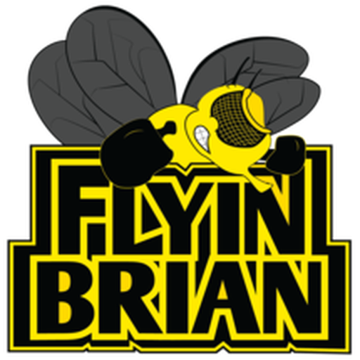 Flyinbrianlogo800x800