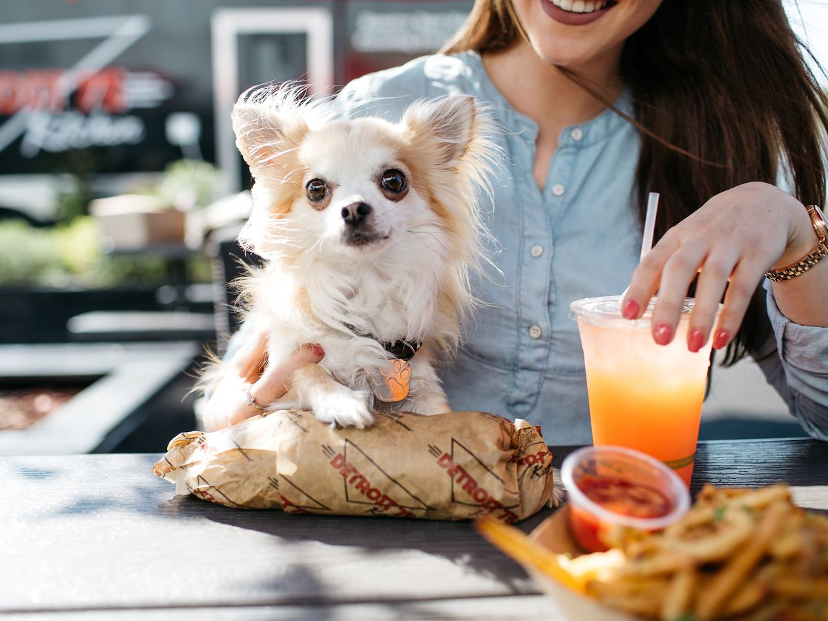 A seated woman holds a small dog and a wrapped sandwich, fries, and a drink sit on the outdoor table in front of her.