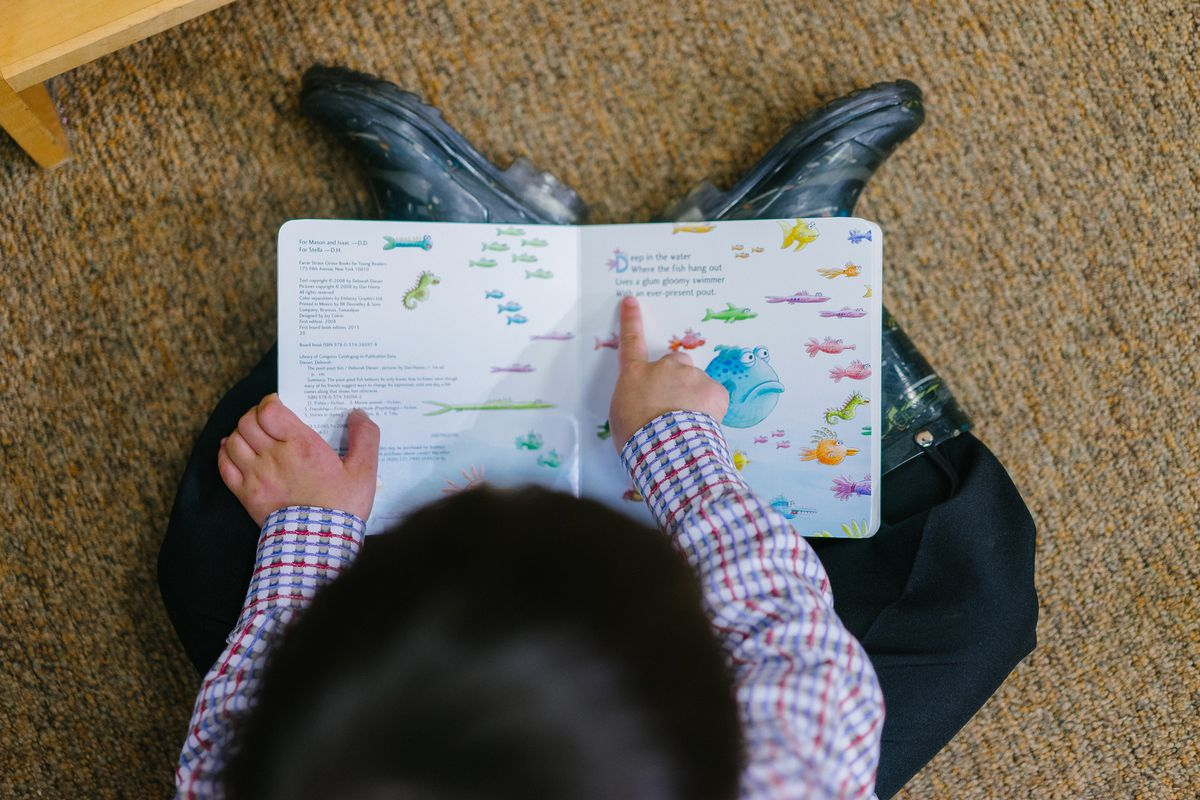 Overhead shot of a young child reading an illustrated children's book about fish.