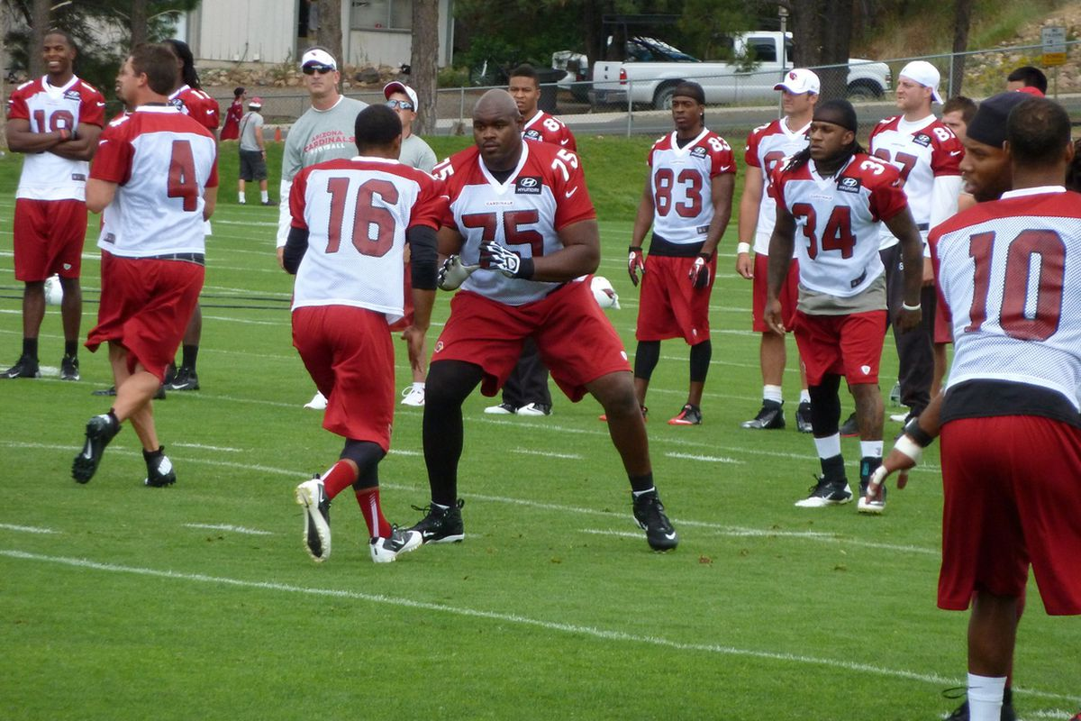Ryan Williams in action during Wednesday's first training camp practice.