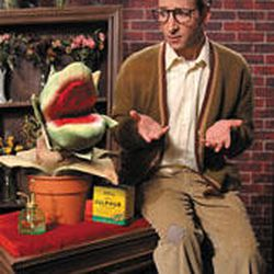 """Peter Riopelle as Seymour in """"Little Shop of Horrors."""""""