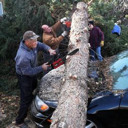 Ralph Price, front left, Darin Taylor and Isaac Clarke help clear one of the fallen tree at neighbor Shan Stott's home in Layton following a wind storm, Thursday, Dec. 1, 2011.