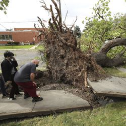 Dave Stroud, daughter Ronnie and son Zak look over a tree that was felled by high winds at their home in the Avenues of Salt Lake City on Tuesday, Sept. 8, 2020.