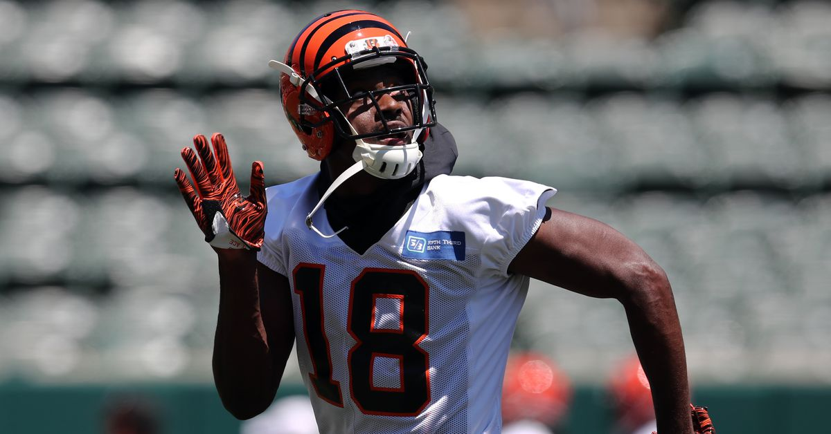 A.J. Green and Geno Atkins barely miss PFF's Top 50 Players