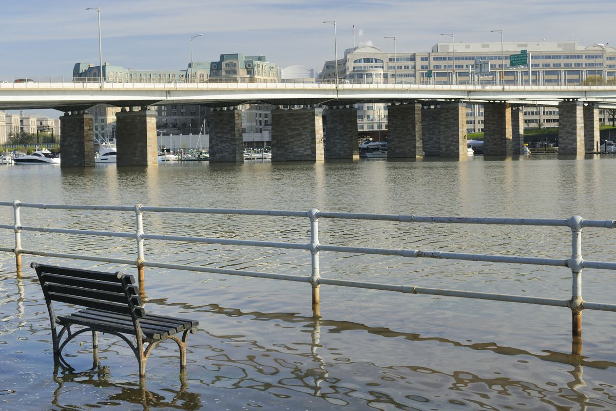A waterfront area along the Anacostia River is shown flooded. Water is overtaking a park bench, and there are buildings and a bridge in the background.