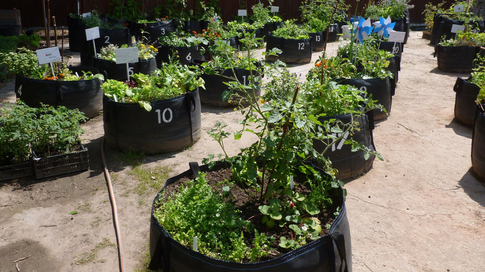 Urban Gardening Tips And Products For The Space Starved
