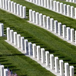 Dan Zaharias, Vietnam War veteran and Commander of VFW Post 409, puts out American flags in the veterans section of the Salt Lake City Cemetery on Saturday, May 26, 2012.  Zaharias and helpers put out more than 2,000 flags in the cemetery.