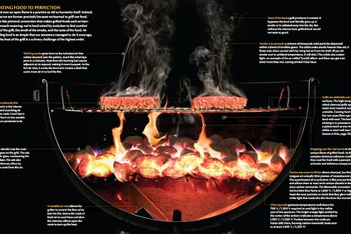 Cutaway of a grill from Modernist Cuisine.