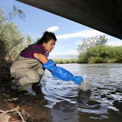 Suzan Tahir, environmental scientist for the Utah Department of Environmental Quality's water quality division, takes water samples from the Jordan River in North Salt Lake on Monday, July 18, 2016.