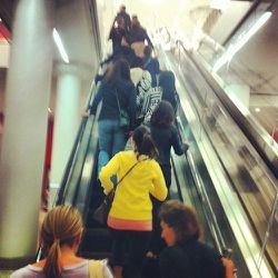 """8:05 a.m.: Lo and behold, the doors soon spring open. A staffer asks everyone to remain """"orderly,"""" and they do—mostly. There's a little spastic motion on the escalator."""
