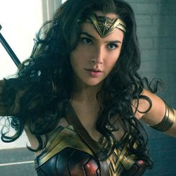 Gal Gadot stars as Wonder Woman in the blockbuster film that could expand the superhero genre.