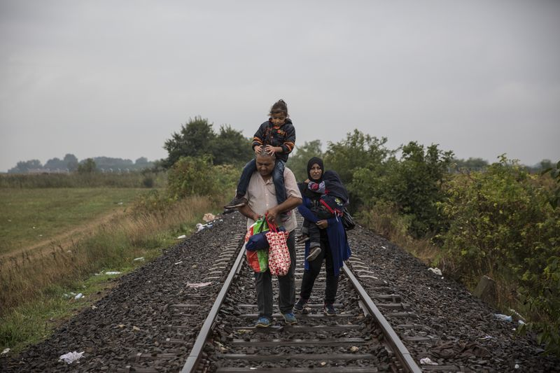 Migrants walk toward a pickup point in Hungary.