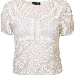 "<a href=""http://us.topshop.com/webapp/wcs/stores/servlet/ProductDisplay?beginIndex=0&viewAllFlag=&catalogId=33060&storeId=13052&productId=5651982&langId=-1&categoryId=&searchTerm=white&pageSize=200""> Topshop Premium embellished tee shirt</a>, $80, topshop"