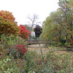 10/23/15: These, and the eight following, show Willowmere in full fall colors, one of the lesser-known spectacular sights in the city.  Burnham Bridge -