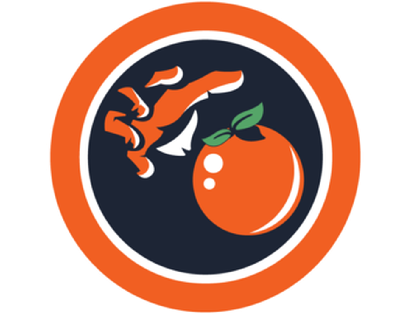What Is Your Favorite Syracuse Logo Troy Nunes Is An Absolute