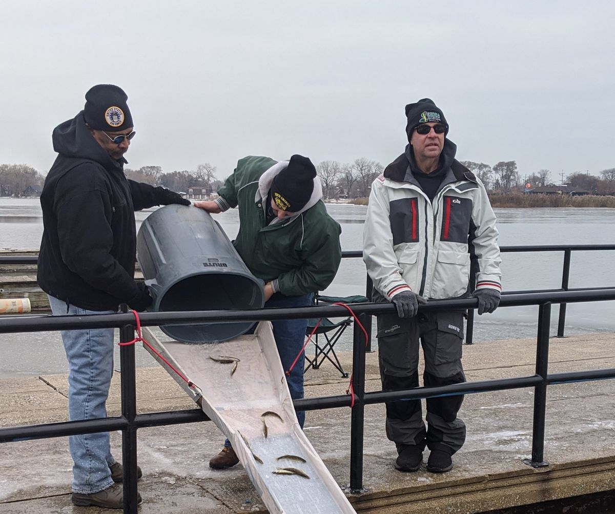 The most enduring citizens' stocking effort is by Perch America for 21 years of walleye advanced growth fingerlings into Wolf Lake; here is the 20th stocking in 2019 with Vince Johnson (left) and Bruce Caruso. Credit: Dale Bowman